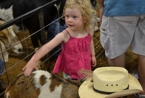 goat farm friends
