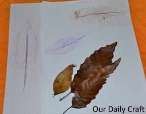 leaf rubbing stationery