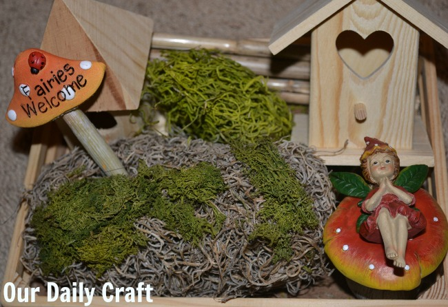 indoor fariy garden kit
