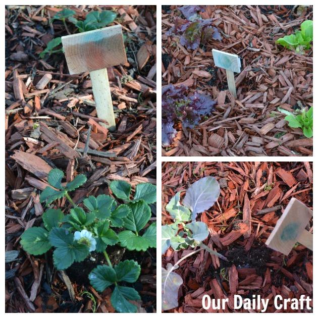 diy garden tags kid craft
