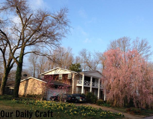 pretty house spring