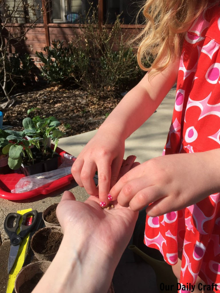 small planting with kids