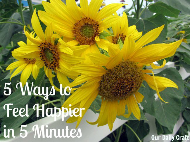 5 Ways to Feel Happier in 5 Minutes