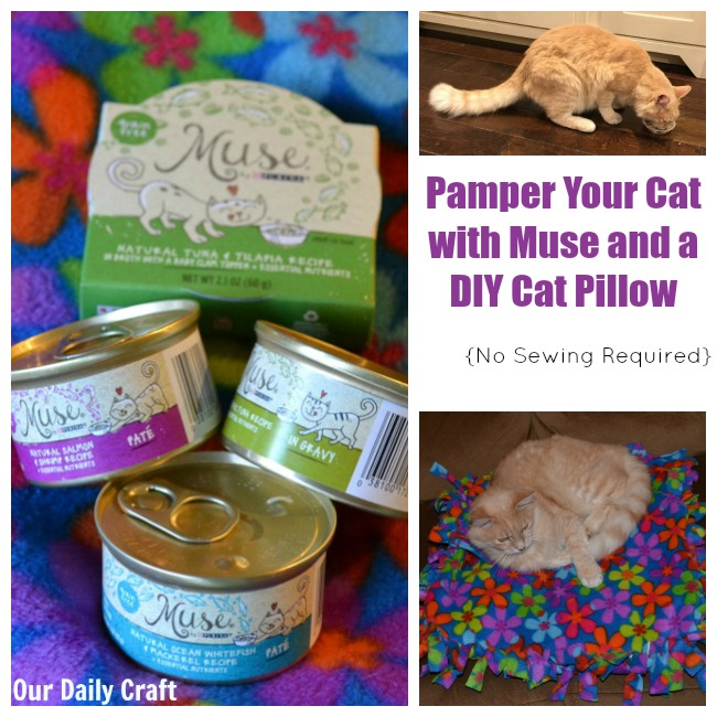 make your cat happy with muse cat food and a diy no-sew cat pillow