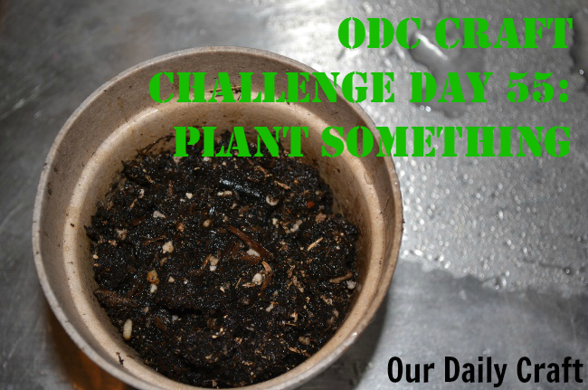 Plant Something