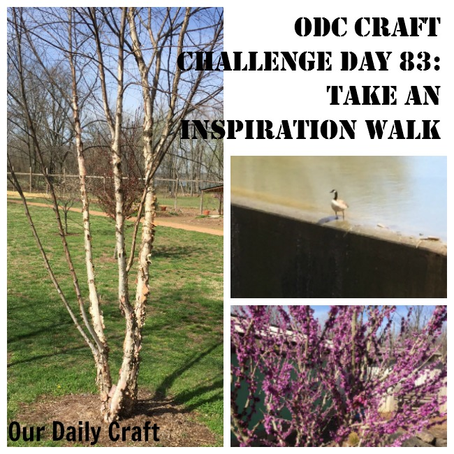 Take an inspiration walk and gather pictures