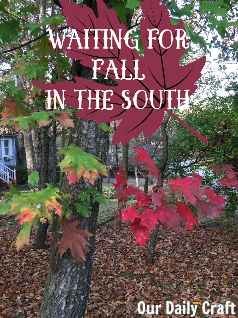 A Southerner's lament as we impatiently wait for fall to start.