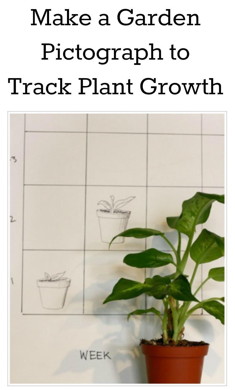 Make a garden pictograph to track how your garden grows.