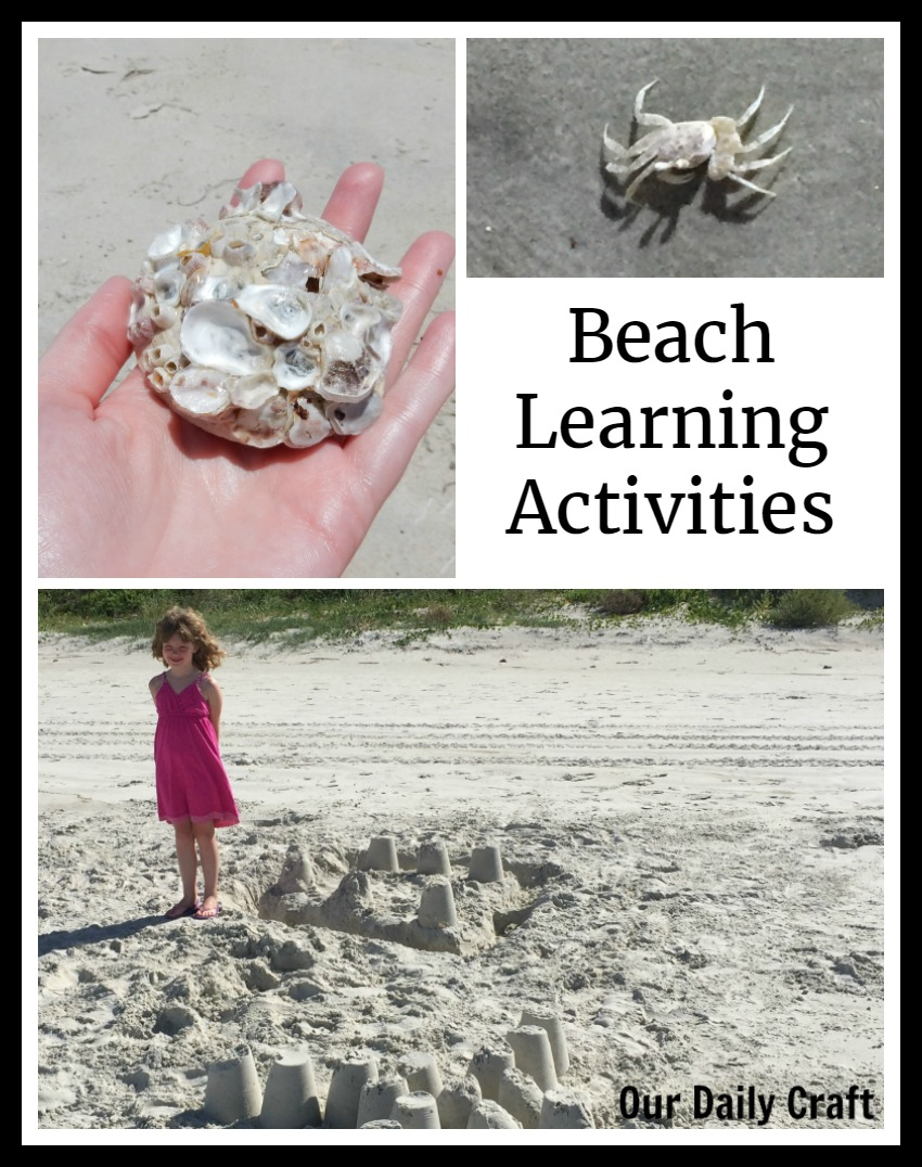 Great beach activities for summer fun and learning.