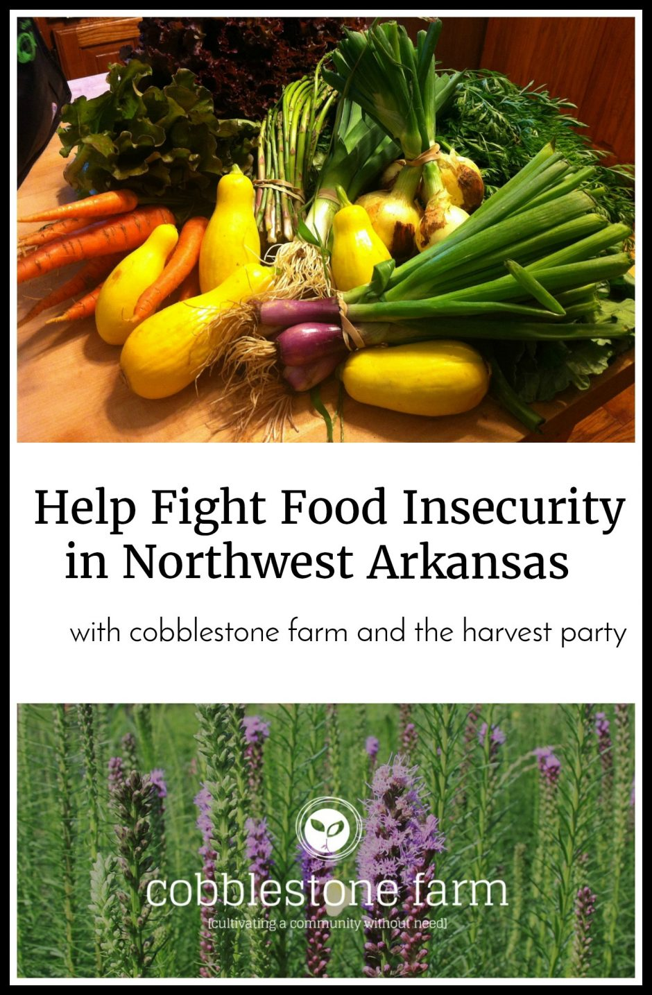 Learn how Cobblestone Farm helps with food insecurity in Northwest Arkansas.