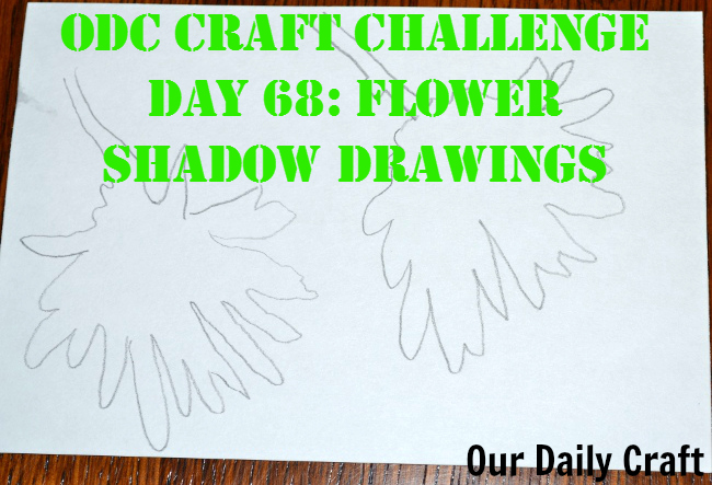 Draw Shadow Flowers {Craft Challenge, Day 68}