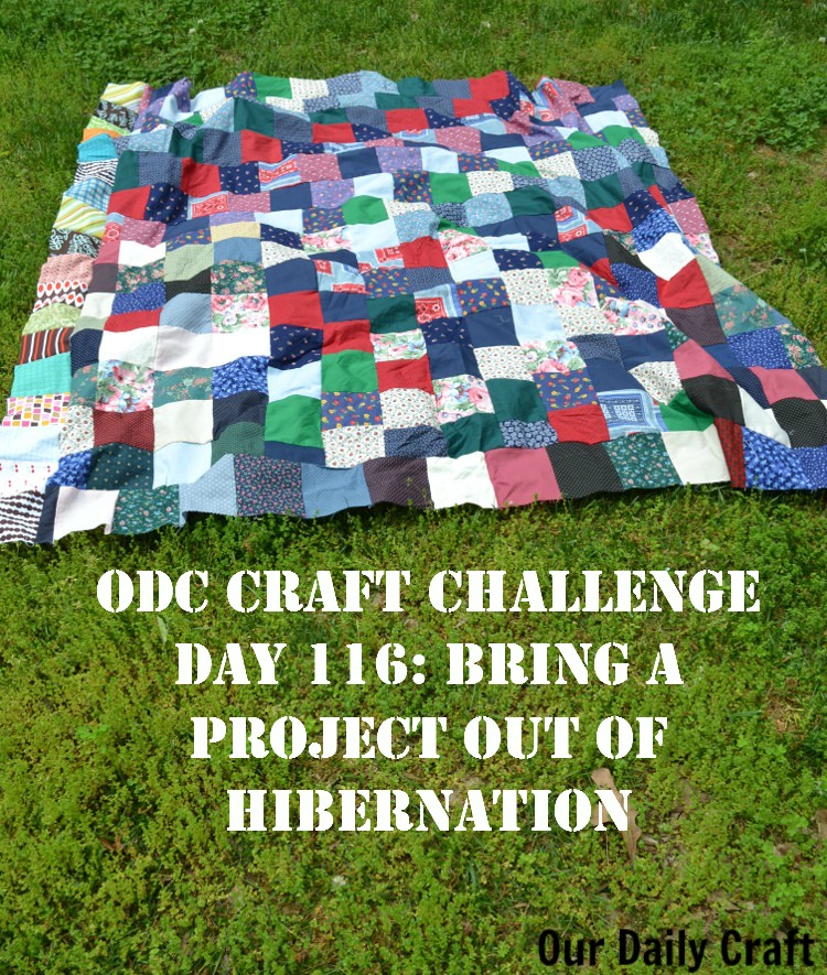 Bring a Project Out of Hibernation {Craft Challenge, Day 116}